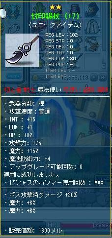 Maple110508_144038.JPG