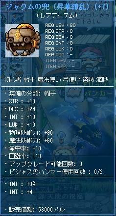 Maple110508_144051.JPG
